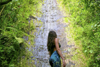 Manoa Falls Waterfall Oahu Courtney Scott