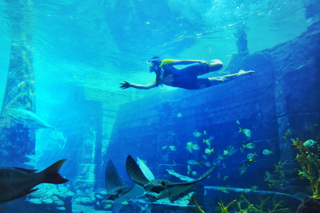Courtney-Scott-Snorkel-The-Ruins-Atlantis