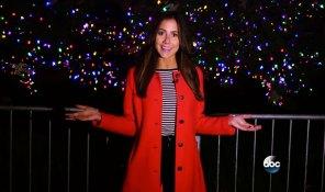 ABC News:  Spectacular Holiday Lights